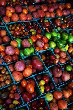 Heirloom tomatoes co
