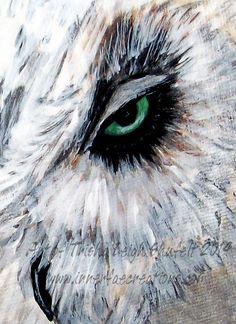 Eye See you (c) 2014 Trisha Leigh Shufelt  https://www.etsy.com/listing/201164165/giclee-art-owl-eye-see-you-giclee?ref=shop_home_feat_2