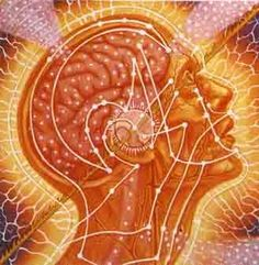 RiseEarth - Only Together We Can Make a Difference: pineal gland