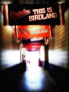 Birdland Hall
