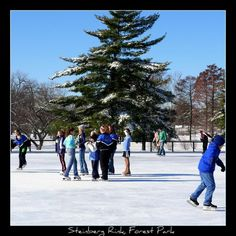 Outdoor Ice Skating at Steinberg Rink, Forest Park, St. Louis