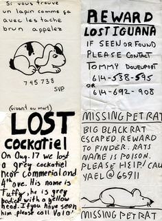 Missing pet posters from around the world. Also, Yael has a rat.