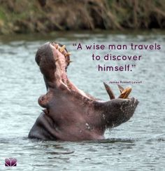 """A wise man travels"