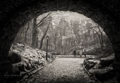 tunnel view in Central Park