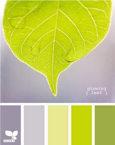 Delicious green & gray