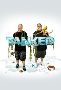 Amazing crazy on pinterest fish tanks aquarium and for Fishing shows on discovery channel