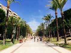 18 mei 2014 - Dag van het Park. Dit park (parque de l'Aigüera) in de Spaanse stad Benidorm werd ontworpen door de architect Ricardo Bofili en is aangelegd in de neoclassicistische stijl. Het park dient als verlengstuk van het gemeentehuis en loopt als een groene ader dwars door de stad.