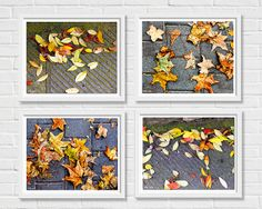 #Art  #Photography#  Nature # fine art print  #nature photography # 4 prints  #set of 4 prints  #nature prints  #autumn leaves #autumn colors  #autumn inspiration # fall #tones # orange and brown  #orange leaves # teamt  #haya gold