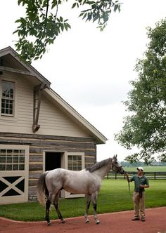 I love the cabin-style barn. The gorgeous grey horse is a plus as well!