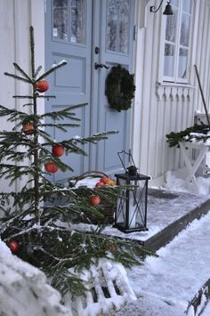 holiday, the doors, front doors, country christmas, scandinavian christmas, christmas trees, outdoor christmas, front porches, christmas porch