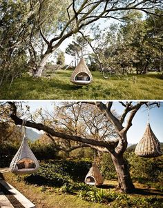 Treehouses for everyone!