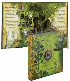 how to find fairies pop-up book - Chasing Fireflies