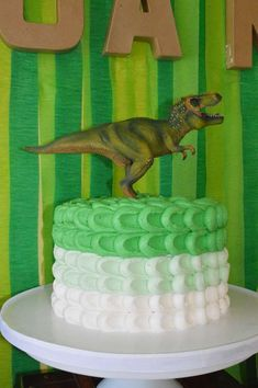Ombre cake at a dino