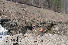 Floor of oldest forest discovered in Schoharie County by New York State Museum researchers