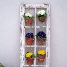 Found my window this weekend!     Hang Planters From An Old Window