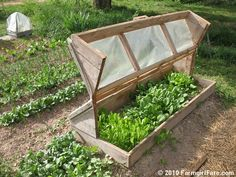 Kitchen garden inspiration - build an Amish cold frame. I love this clever design. No plans available (our Amish friends didn't even use plans to build our sheep barn), but there are 10 photos in this post showing construction details.