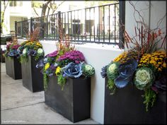 gorgeous award winning container garden lanscape designs by tu bloom designs inc. flower containers, garden ideas, fall flowers, color, willow, winter flowers, landscape designs, garden stuff, container gardening