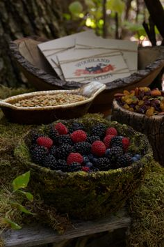Woodland Creature Menu. Put out berries, nuts, and trail mix for every guest at the baby shower to enjoy.