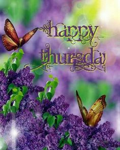 Image result for happy thursday