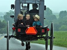 Kids In Buggy...