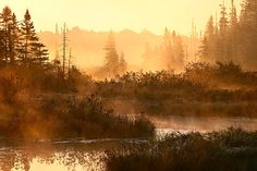Morning-Warmth by Kyle McDougall