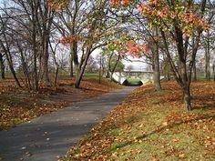 Autumn in Bayonne Park