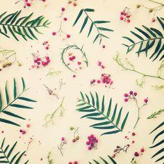 Pepper tree collage by Julie Lee