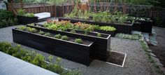 Lovely raised beds at different heights. Gardenista