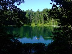 Pigeon State Forest Campgrounds in Michigan.... LOVE these campgrounds xoxoxox