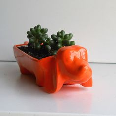 Ceramic Dachshund Planter Vintage Design In Orange by fruitflypie, $39.99