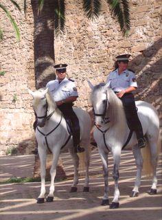 Patrulla policía montada  Palma Mallorca Spain