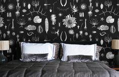 Natural curiosities by clinton friedman #black #wallpaper #decor