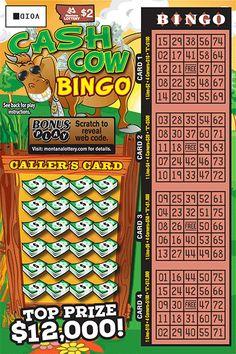 scratch ticket, cash cow, cow bingo