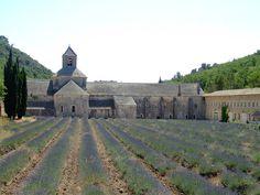 Abbaye Senanque in Provence