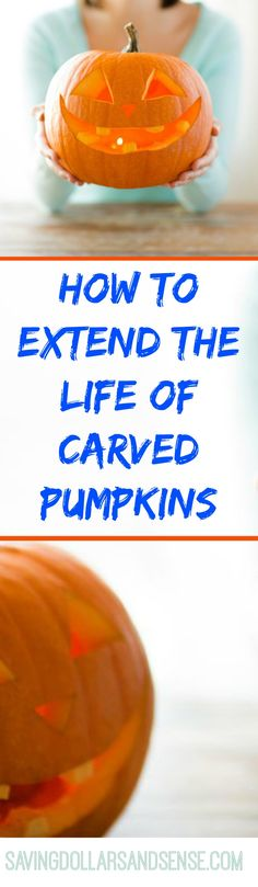 Use these tips to ensure your pumpkins will last until the end of the month by slowing down the rotting process.