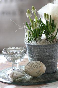 Pretty white Spring vignette