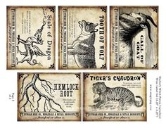 Macbeth Witch Potion Wine Labels