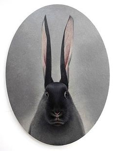 bE Bunny... by shao fan ...hare looking into the mirror...