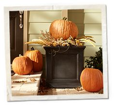 Cute fall decor idea for outside! #FallStyleGuide