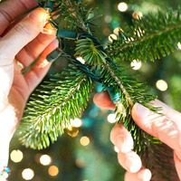 How to Decorate a Christmas Tree from Better Homes & Gardens