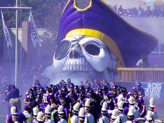 Love my Pirates