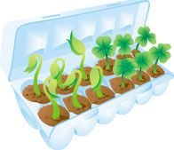 http://www.eduplace.com/hac/recycle/eggcarton.html    Daisy Flower Garden journey craft. Could be community garden. Decorate cartons and deliver to teachers / senior homes so they may transplant if desired. Spreading the garden to many different locations in the community.