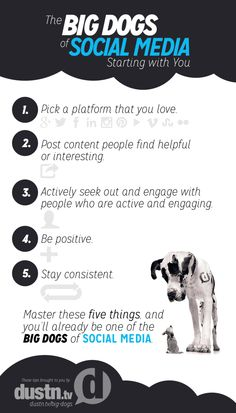 Big dogs of social media tips infographic