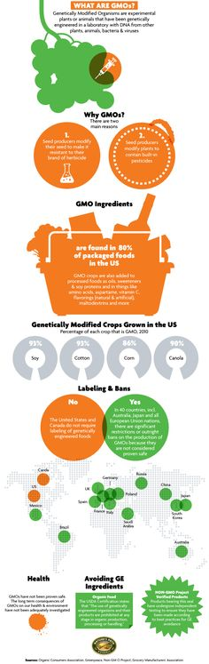 What do you know about GMOs?    Most eaters remain in the dark, because the U.S. and Canada — unlike Japan, Australia, and the European Union — don't require GMOs to be labeled as such, even though 80 percent of packaged foods in this country contain genetically engineered ingredients. Check out this nifty infographic for a primer on GMOs.