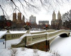Bow Bridge in Central Park NYC