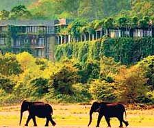 Kandalama is Sri Lanka's Best Five Star Resort for the Second Successive Year at Dambulla near UNESCO world heritage sites