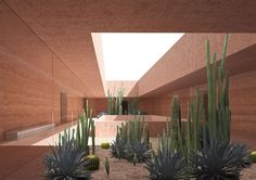 david chipperfield architects designs the marrakech museum for photography and visual arts (MMP+) -  designboom