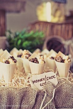 African party theme, jungle goodie cones