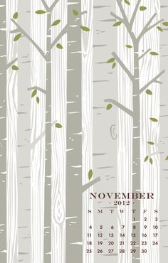 Birch Trees, Nov 2012