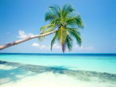Is Your Blog Stuck on An Island?